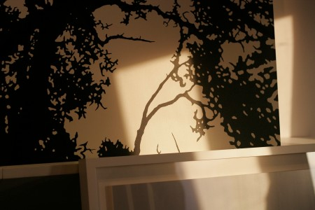 trees with shadows