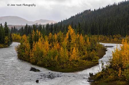 Denali National Park autumn river landscape