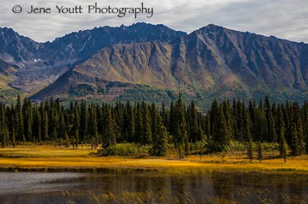 Denali National park autumn mountain landscape