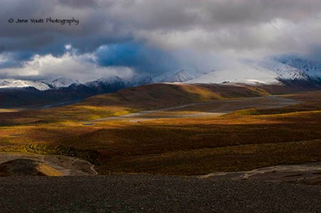 Polychrome at Denali National Park, autumn