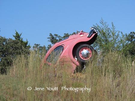 Buried pink Volkswagen, john hargrove