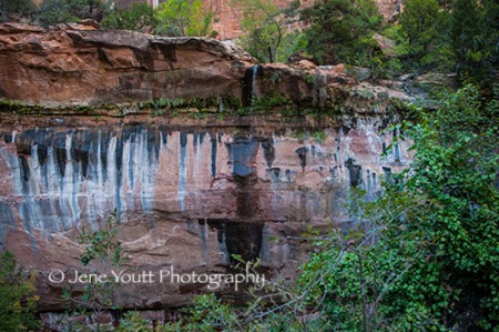 rock face waterfalls, zion nat'l park