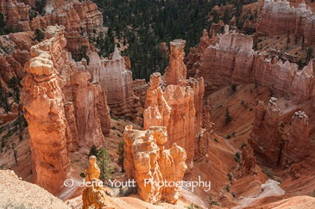 hoodoos, bryce national park