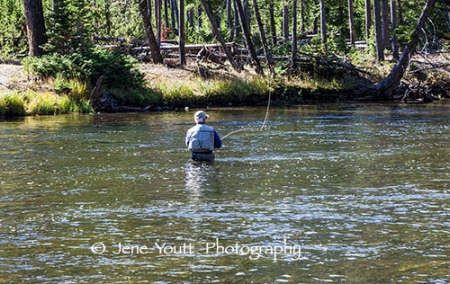 fisherman in yellowstone national park